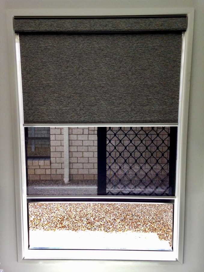dual rollers blinds hamilton 2